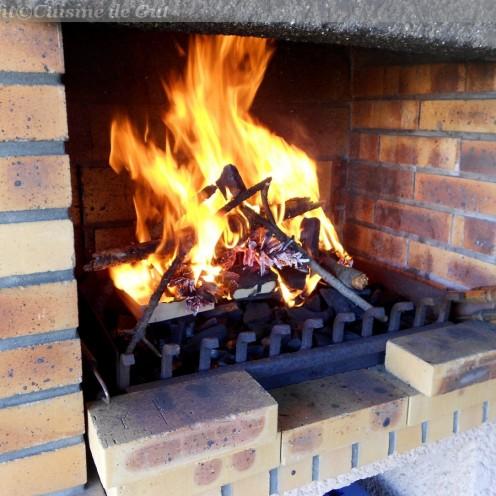 1 - Allumer un feu avec du petit bois, des pommes de pin et du charbon de bois