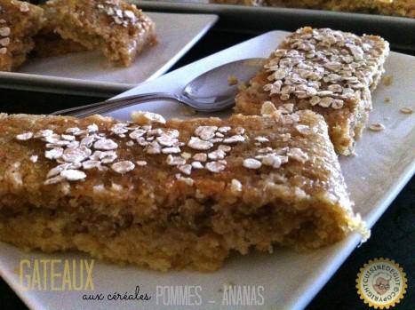 Gâteaux aux céréales 2