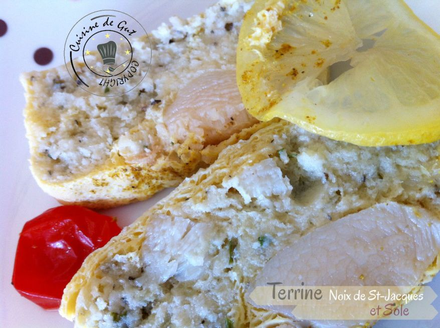 Terrine Noix de St-jacques et sole 5