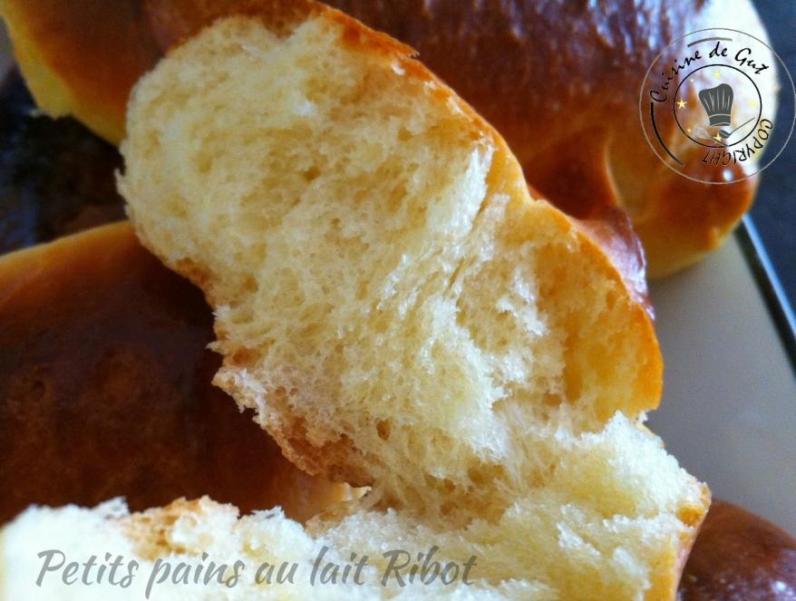 Petits pains au lait ribot 1