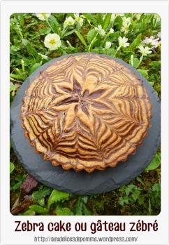 Zebra cake Nathalie delice de pomme