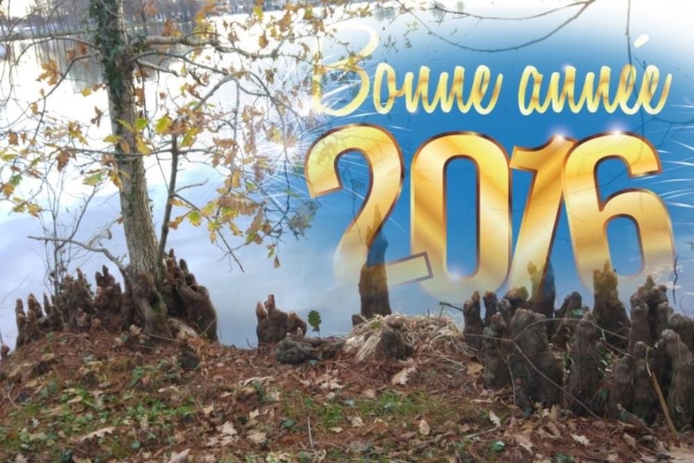 BONNE-ANNEE-2016