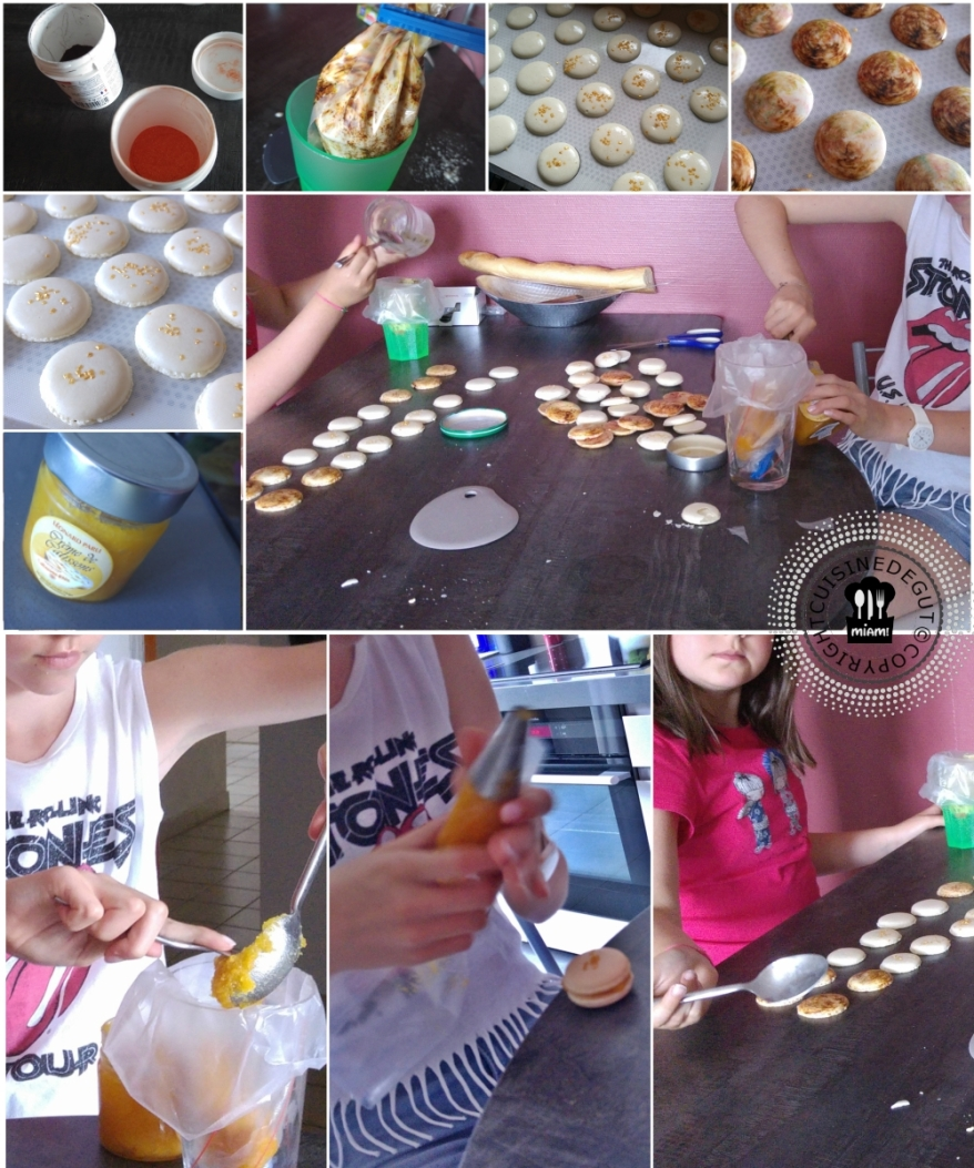 Macarons aux calissons2