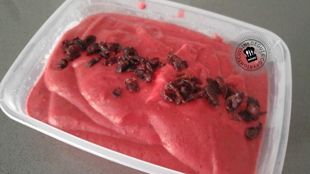 Sorbet framboises et cranberries1
