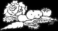 Légumes dessin1